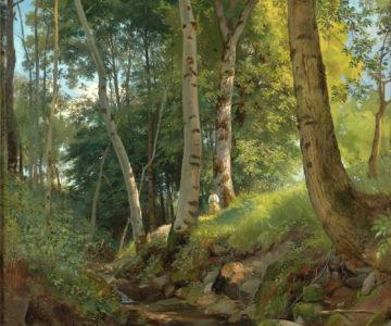 Bojovníci v lese (citát)