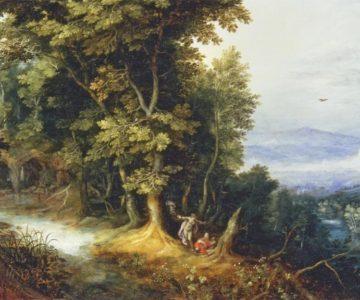 Příroda a poznání (citát)