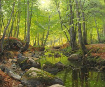 Knovid a Gripuid: Procházka jarním lesem s pány z Knovíze a z Gwyneddu